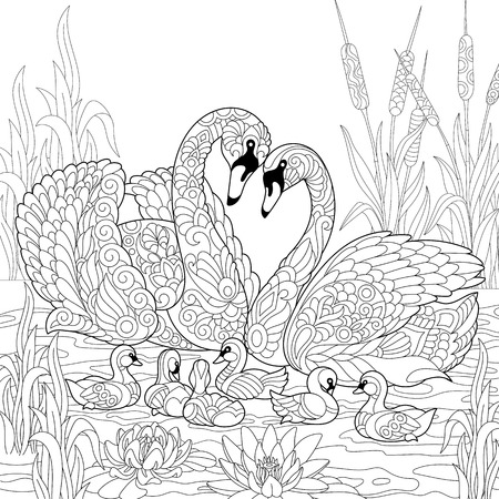 Coloring Book Page Of Swan Birds Family Lotus Flowers And Reed Grass Freehand Sketch