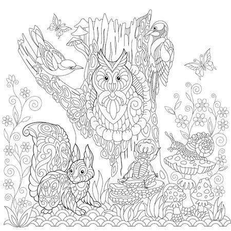 Kleurboek pagina van boslandschap, uil, koekoekvogel, specht, eekhoorn, slak, stag kever, vlinders. Freehand tekening voor volwassen antistress kleuren met doodle en zentangle elementen. Stock Illustratie