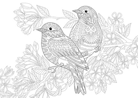Coloring page of two birds. Freehand sketch drawing for adult antistress colouring book with doodle and zentangle elements. Ilustração