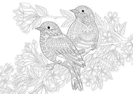 Strona kolorowanka dwóch ptaków. Odręczny rysunek szkicu dla dorosłych antystresowej kolorowanka z elementami doodle i zentangle. Ilustracje wektorowe