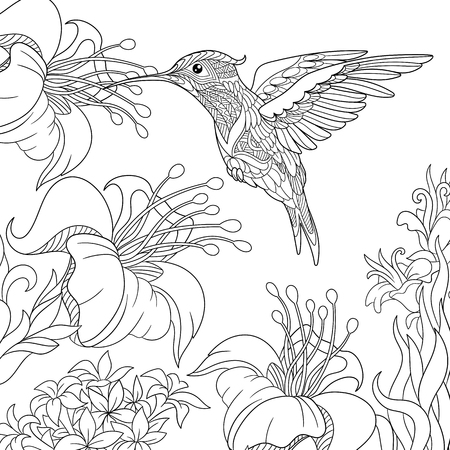 Coloring page of hummingbird and hibiscus flowers. Freehand sketch drawing for adult antistress colouring book with doodle and zentangle elements. Vectores