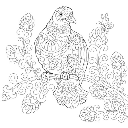 coloring pages pigeon.html