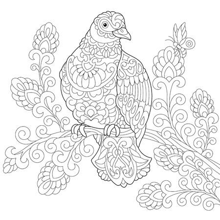 Malvorlage Von Taube (Taube) Vogel Freehand Skizze Zeichnung Für ...