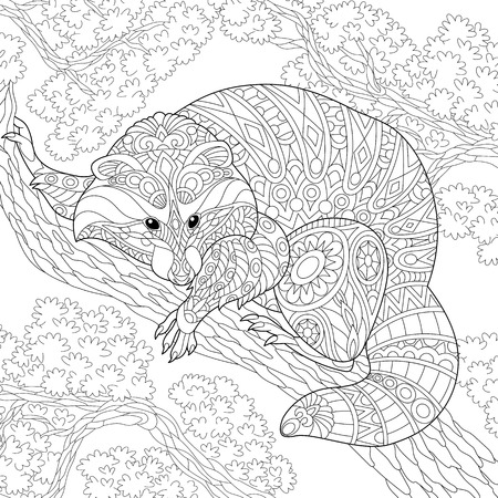 Coloring page of raccoon sitting on tree branch. Freehand sketch drawing for adult anti-stress coloring book in zentangle style.