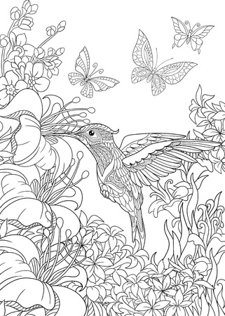 Coloring page of hummingbird, butterflies and hibiscus flowers. Freehand sketch drawing for adult antistress coloring book in zentangle style. Illustration