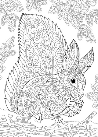 Coloring page of squirrel eating pine cone. Freehand sketch drawing for adult antistress coloring book in zentangle style. Vectores