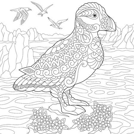 Kleurplaat van papegaaiduiker, zeevogel van noordelijke en arctische wateren. Schetstekening uit de vrije hand voor adulte kleurboek voor volwassenen in zentangle-stijl. Stock Illustratie