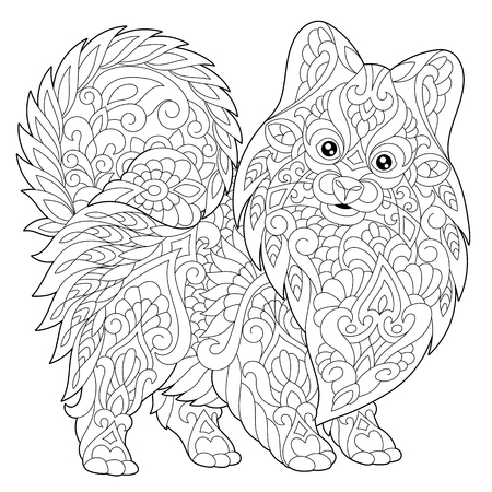 Coloring page of pomeranian, dog symbol of 2018 Chinese New Year. Freehand sketch drawing for adult antistress colouring book with doodle