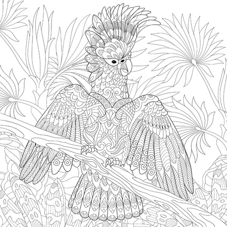 Coloring page of australian cockatoo parrot in tropical jungle forest. Freehand sketch drawing for adult antistress colouring book with doodle and zentangle elements.