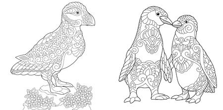Puffin, seabird of North Pacific and Atlantic Oceans. Antistress freehand sketch collection with doodle and zentangle elements.