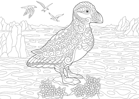 Coloring Page. Adult Coloring Book. Puffin, a hole-nesting auk (seabird) of northern and Arctic waters. Antistress freehand sketch drawing with doodle and zentangle elements.