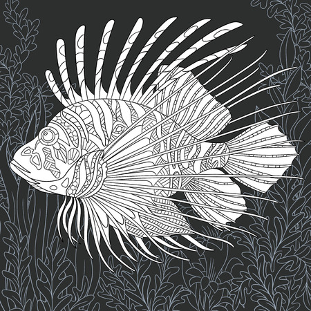 Lion-fish drawn in line art style. Ocean background in black and white colors on chalkboard. Coloring book. Coloring page.  vector illustration.