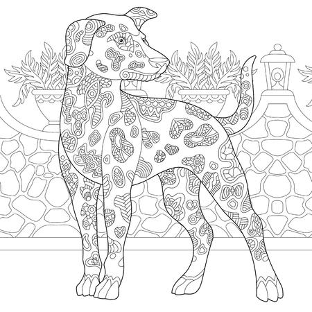 Dalmatinischer Hund. Malvorlagen. Malbild. Malbuchidee für Erwachsene. Freihandskizzenzeichnung. Vektorillustration. Vektorgrafik