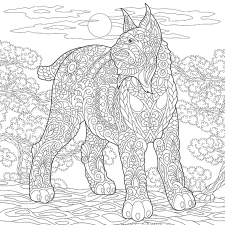 Wildcat. Coloring Page. Colouring picture. Adult Coloring Book idea. Freehand sketch drawing. Vector illustration.