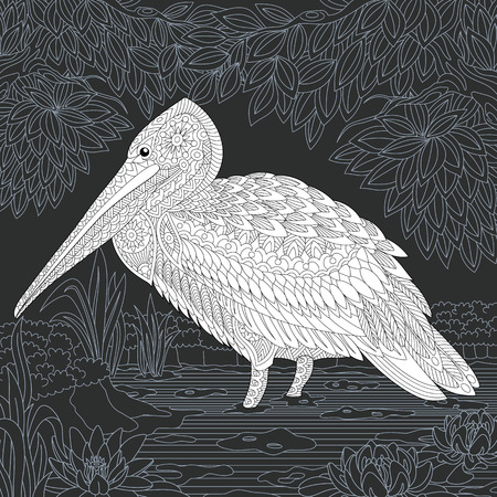 Pelican drawn in line art style. Lake floral background in black and white colors on chalkboard. Coloring book. Coloring page.