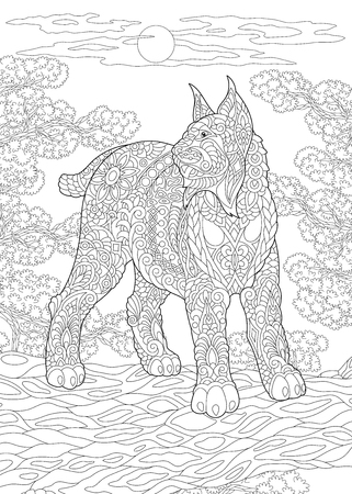 Coloring Page. Coloring Book. Colouring picture with wildcat. Antistress freehand sketch drawing with doodle