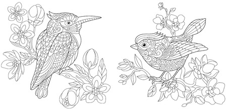 Coloring Pages. Coloring Book for adults. Colouring pictures with kingfisher and canary bird. Antistress freehand sketch drawing with doodle and elements.