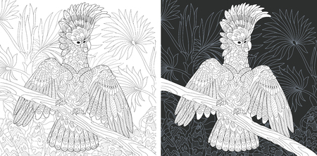 Coloring Page. Coloring Book. Colouring picture with Cockatoo Parrot drawn