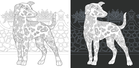 Coloring Page. Coloring Book. Colouring picture with Dalmatian Dog drawn in style. Antistress freehand sketch drawing. Vector illustration.