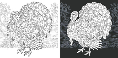 Coloring Page. Coloring Book. Colouring picture with Turkey drawn in style. Thanksgiving day holiday bird symbol. Vector illustration.