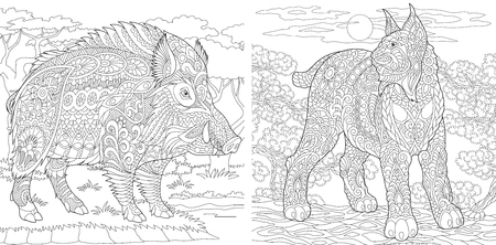 Coloring Pages. Coloring Book for adults. Colouring pictures with wildcat and wild boar. Antistress freehand sketch drawing with doodle and zentangle elements. Banco de Imagens - 110955692