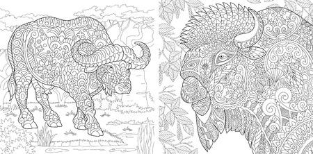 Pagine da colorare. Libro da colorare per adulti. Immagini da colorare con bufali e bisonti. Disegno a mano libera antistress con elementi doodle e zentangle. Vettoriali