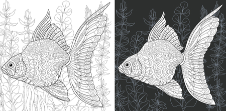 Coloring Page. Coloring Book. Colouring picture with Gold Fish drawn in hand draw style. Antistress freehand sketch drawing. Vector illustration.