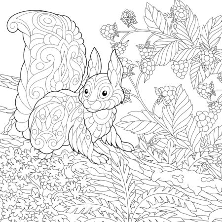 Coloring page. Coloring picture of cute squirrel in the forest. Line art design for adult colouring book with doodle