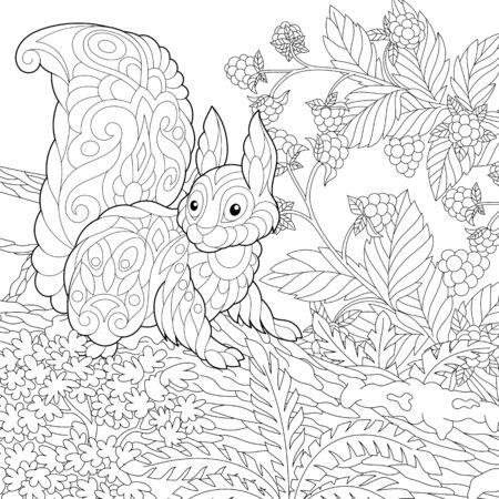 Página para colorear. Cuadro para colorear de ardilla linda en el bosque. Diseño de arte lineal para libro de colorear para adultos con doodle
