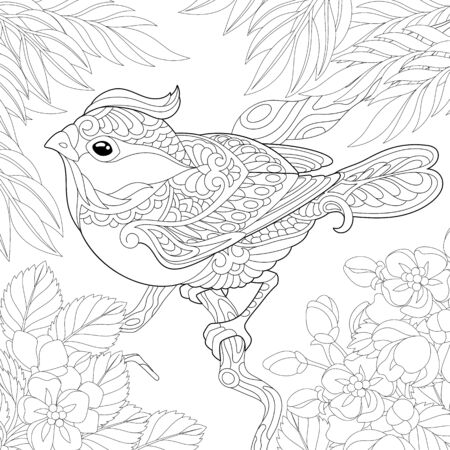 Coloring page. Coloring picture of beautiful bird sitting on the tree branch. Line art design for adult colouring book with doodle Ilustración de vector