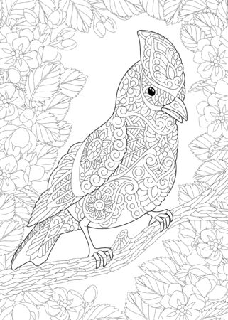 Coloring page. Coloring picture of beautiful bird in the floral garden. Line art design for adult colouring book with doodle