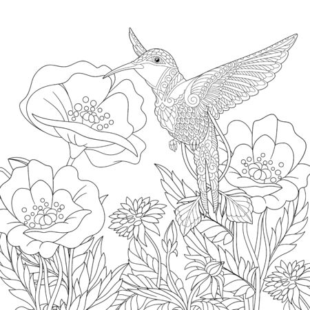 Coloring page. Coloring picture of beautiful hummingbird and poppy flowers. Line art design for adult colouring book with doodle and elements.