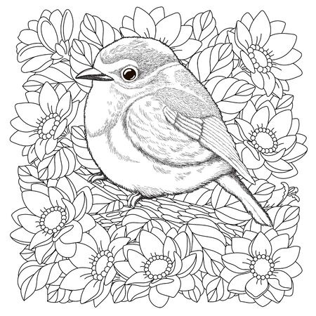 Coloring page. Coloring picture of beautiful bird in the flower garden. Engraved line art design for adult colouring book. Stock Illustratie