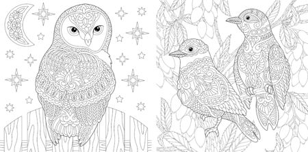 Adult coloring book. Beautiful owl and couple of lovely birds in the garden. Line art design for antistress colouring pages in zentangle style. Vector illustration.