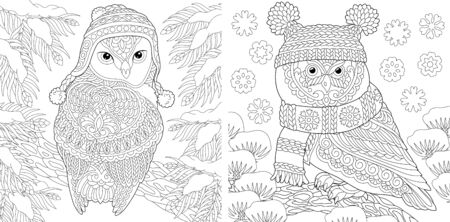 Animal coloring pages. Cute owls in winter hats. Line art design for adult or kids colouring book in zentangle style. Vector illustration.