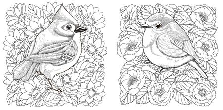 Adult coloring pages. Two birds among beautiful flowers. Line art design for antistress colouring book in zentangle style. Vector illustration.  Stock Illustratie