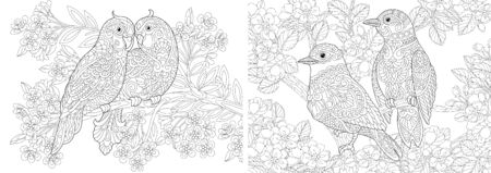 Coloring book. Couple of lovely birds in floral garden. Line art design for adult or kids colouring page in zentangle style. Vector illustration.