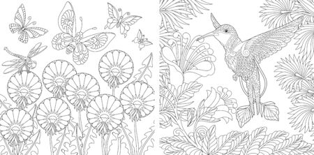 Adult coloring book. Vintage butterflies and hummingbird among flowers. Line art design for antistress colouring pages in zentangle style. Vector illustration.