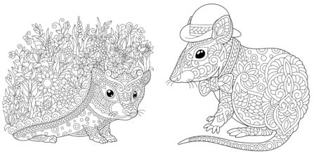 Coloring pages. Hedgehog with flowers and cute mouse in hat. Line art design for adult colouring book with doodle and elements. Vector illustration.