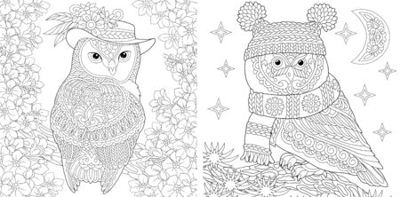 Coloring pages. Two owls in cute hats showing different seasons: spring and winter. Line art design for adult colouring book with doodle and elements. Vector illustration. Stock Illustratie