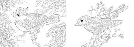 Coloring pages. Decorative birds in the garden. Line art design for adult colouring book with doodle and elements. Vector illustration. Stock Illustratie