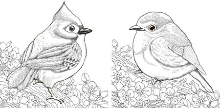 Coloring pages. Two birds sitting on cherry blossoming tree branch. Line art design for adult colouring book with doodle and elements. Vector illustration. Stock Illustratie