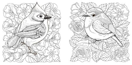 Coloring pages. Birds in spring floral garden. Line art design for adult colouring book with doodle and elements. Vector illustration. Stock Illustratie