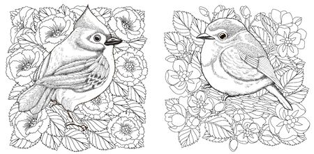 Coloring pages. Two birds among beautiful blooming flowers. Line art design for adult colouring book with doodle and elements. Vector illustration.