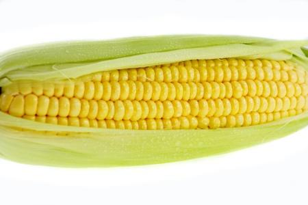 shuck: fresh closeup corn on insulated white background Stock Photo