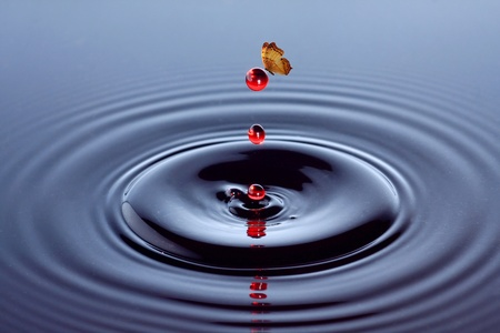 exotic butterflies: butterfly and red water drop Stock Photo