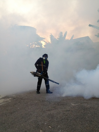 workers are fogging for dengue control photo