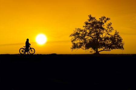 cyclist and tree silhouette via great sunset photo