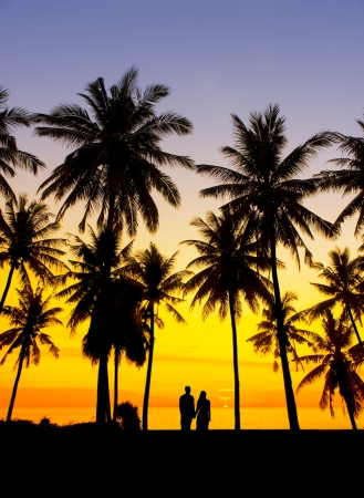 amazing sunset with silhouette of couple and coconut tree photo