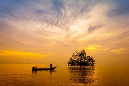 sunset with silhouette tree and fishing photo